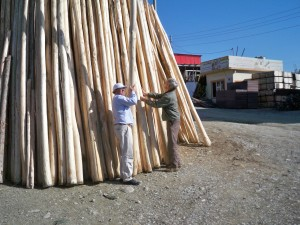 Selecting poles for new Global Relief jungle gym playground in Iraq